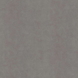 аргиллит серый F651